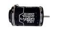 ACUVANCE Miscellaneous All LUXON BS Dual 7.5T Motor Black