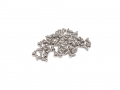 Miscellaneous All Over Fender Screws Silver by Team DC