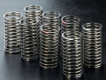 Miscellaneous All 32MM Coil Spring Set (8)  by MST